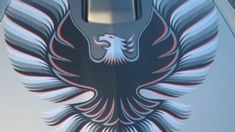 - 1979 Pontiac Trans Am 10th Ann Silver Decals Ultimate ...