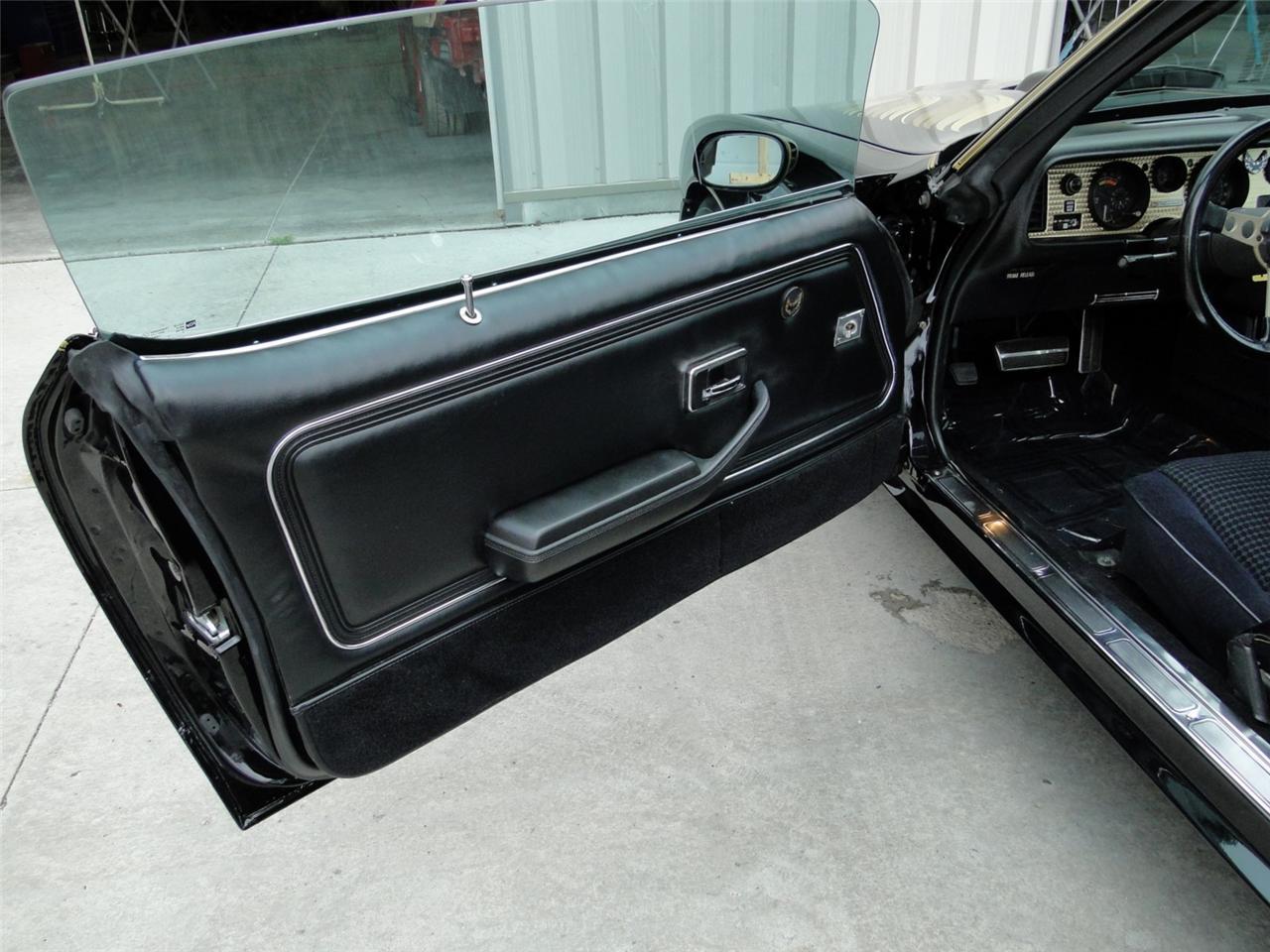 ... 1978-81 Pontiac Firebird Trans Am Deluxe Door Panels Pair NEW 5 Colors - INT ... & 1978-81 Pontiac Firebird Trans Am Deluxe Door Panels Pair NEW 5 ...